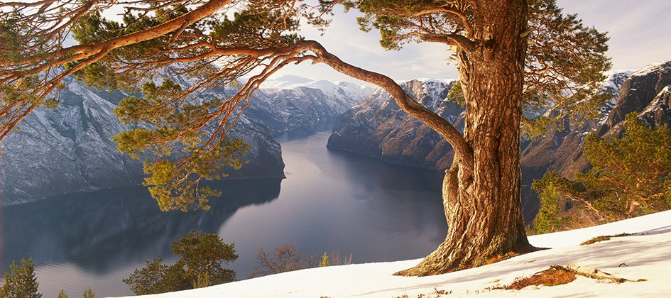 02-Aurlandsfjord